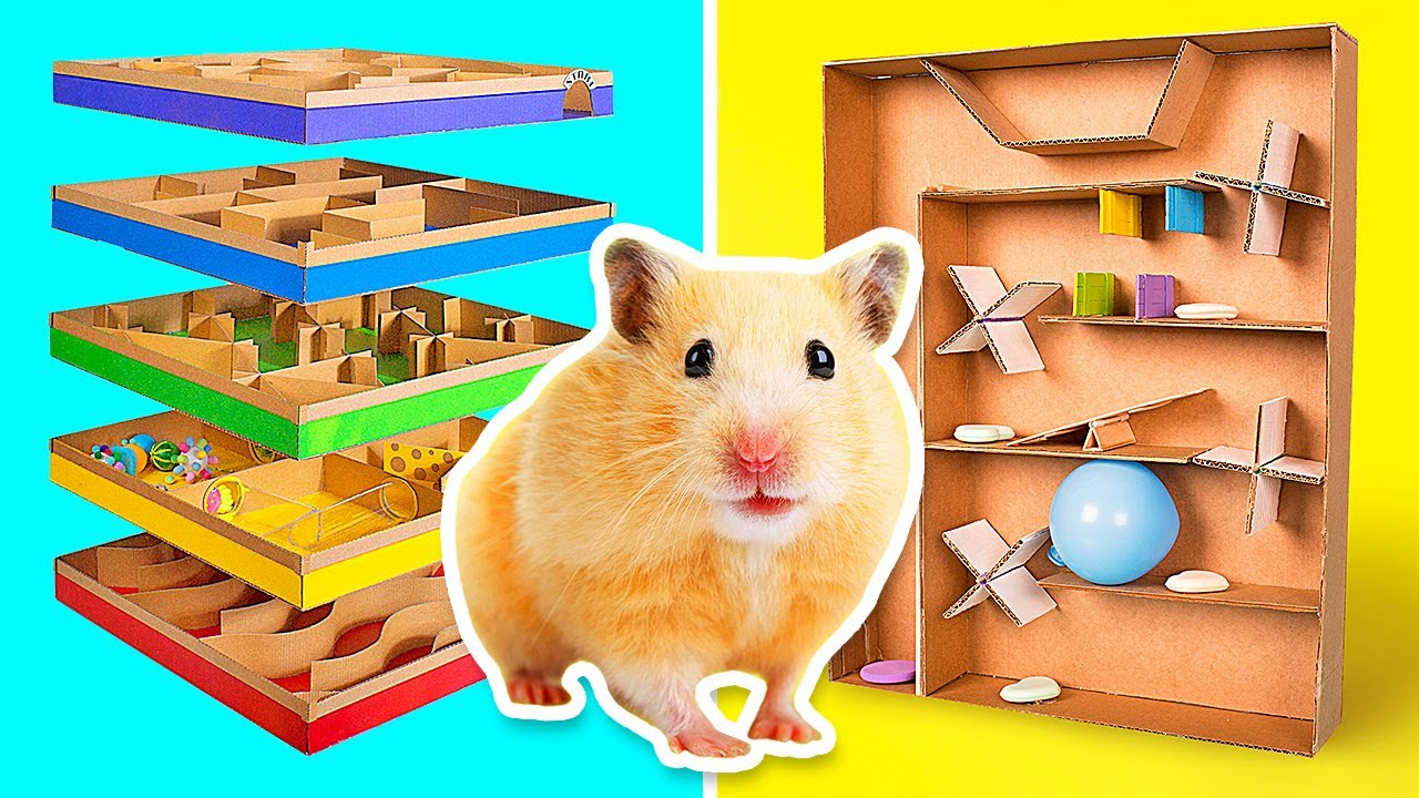 Coolest Crafts For Active Hamsters    DIY Mazes From Cardboard