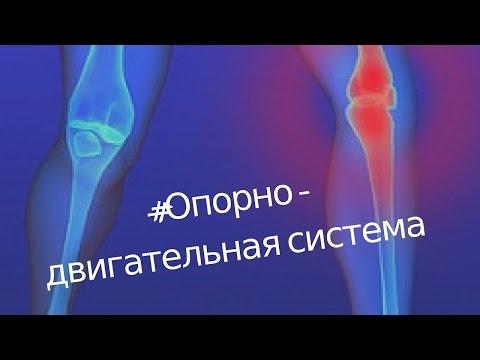 Здравницы юга России - Здравницы Юга России