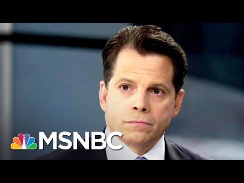 Anthony Scaramucci Hire Part Of Donald Trump's Desire For 'Image Of Fighters' | MSNBC