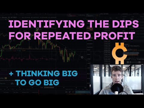 Identifying The Dips + Repeating Your Profits, Picking Altcoins, Harvard Economists - CMTV Ep61
