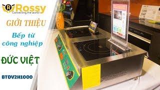 Giới thiệu Bếp từ Đức Việt hai bếp hầm BTDV2H1000 | Induction Cookers | Bếp từ