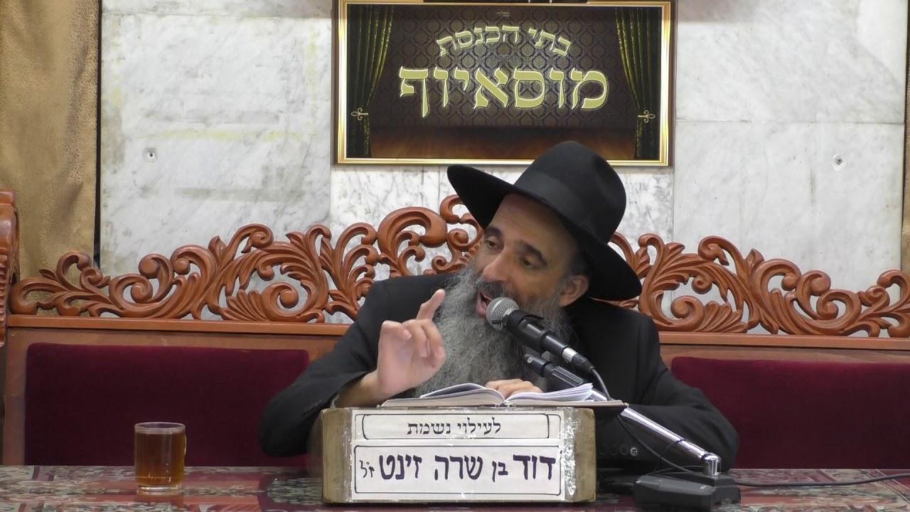 הרב מאיר שמואלי  נזקי שכנים