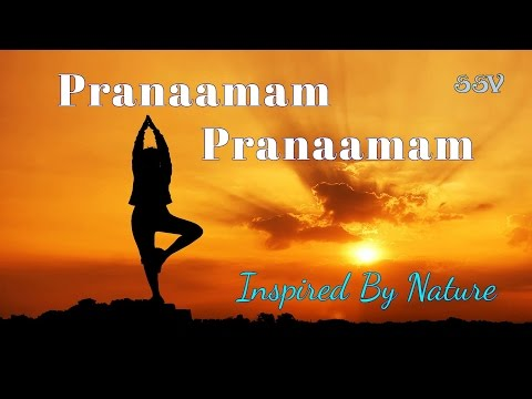 Pranaamam pranaamam - Janatha Garage