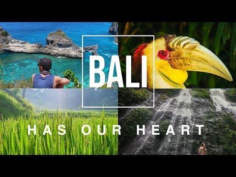 Bali has our heart   Organic Optics   Travel Bali