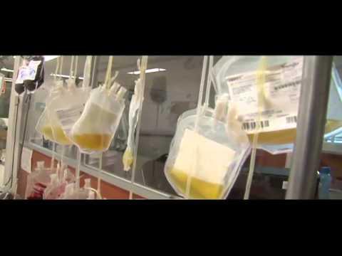 Las plaquetas es un elemento de la sangre cada vez más solicitado por la población