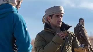 Dubai Crown prince-Sheikh Hamdan|Falcons|Lifestyle
