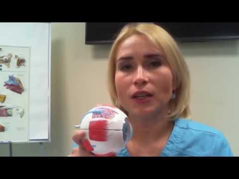Лазерная коррекция зрения Femto-LASIK. Глазная хирургия Расческов