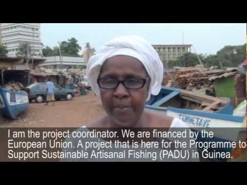Guinea: Working with artisanal fishing communities