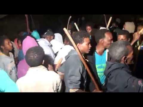 Eritrean Wedding Arki Hilifot in digsa Ab Meria Samuel Tesfay and Yordanos Kibrom 2
