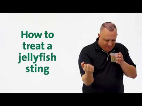 Brenniston First Aid Mythbusters - How To Treat A Jellyfish Sting