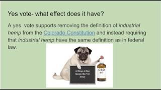 Explaining the issues Amendment X