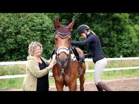 Horse Show lähestyy: haastattelussa Ida Palmos