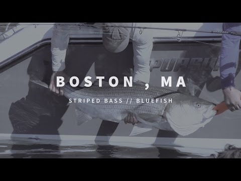 New England Fishing // Boston, MA // Episode 105