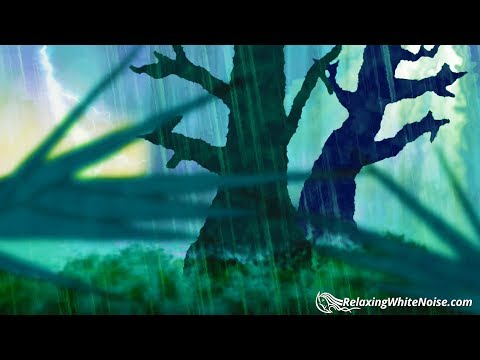 Forest Thunder & Rain | Sleep, Study, Meditate | Rainstorm White Noise 10 Hours