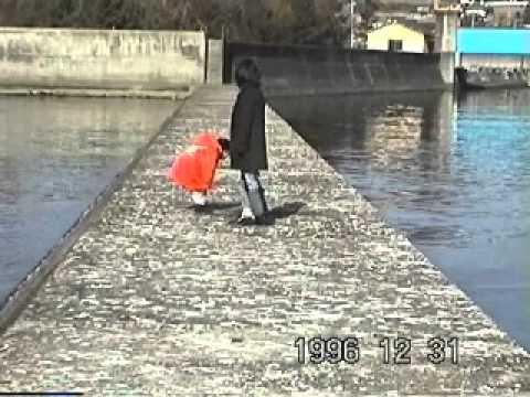 1996 12 31 shizugawa 志津川
