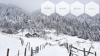 Relaxing Sleep Music: Relaxing Music, Stress Relief - Relaxing Snowfall
