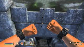 Things to do in... Elder Scrolls IV: Oblivion - Paintbrush Staircase Glitch