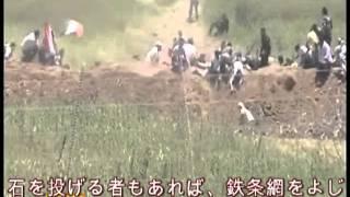2011年6月5日 ゴラン高原イスラエル軍射撃