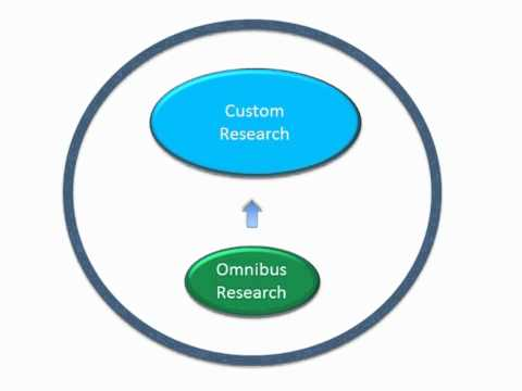 VeraQuest Online Omnibus Surveys Takes Hybrid Approach