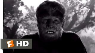 The Wolf Man (1941) - The Hunt is On Scene (9/10) | Movieclips