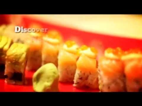 תיירות הרצליה מסעדות ובארים Herzliya Tourism Restaurants & Bars
