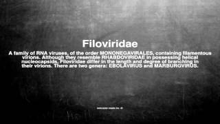 Medical vocabulary: What does Filoviridae mean