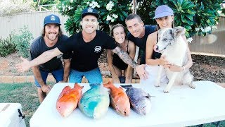 Spearfishing Catch And Cook BBQ FISH WINGS   Whale Shark & Moray Eels - Ep 68