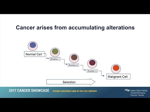 Personalizing Cancer Care and Treatment