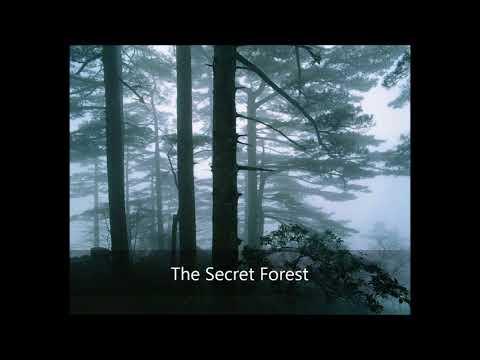 Bill Douglas - The Secret Forest (Deep Peace)