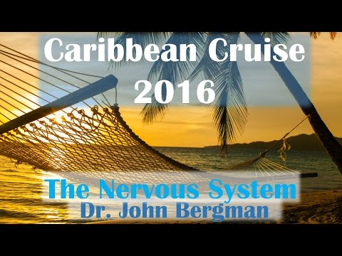 Caribbean Cruise 2016: Dr. Bergman- The Nervous System