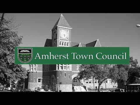 Town Council Public Forum: Jones Library