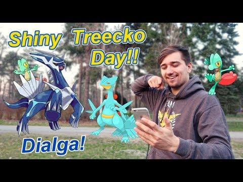 Pokémon GO   Shiny Treecko Community Day a Dialga!!   Jakub Destro thumbnail
