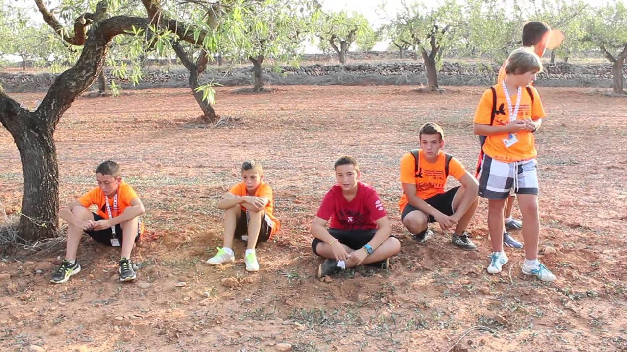 final del iii campeonato juvenil de colombicultura de la cv - trofeo gva jove 2014