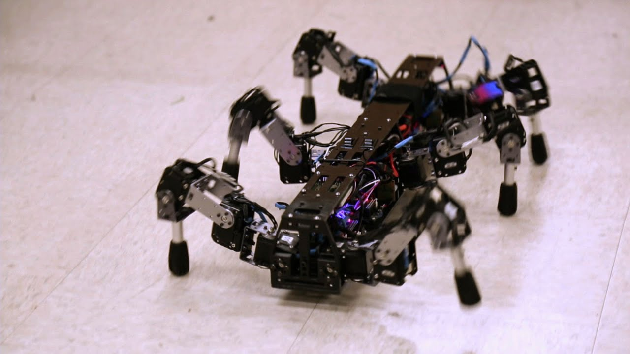 Deviantart Robot Animals: Building Animal-Like Robots