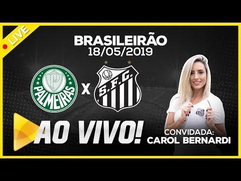 AO VIVO: PALMEIRAS x SANTOS | NARRAÇÃO | BRASILEIRÃO (18/05/19)