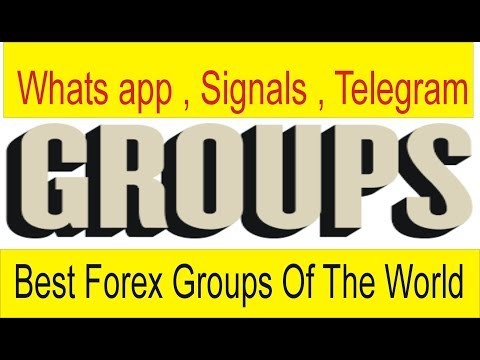 Top forex telegram groups