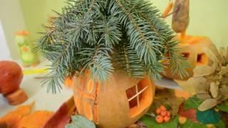 Красивая композиция из овощей и природного материала Осенние поделки