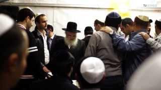 Внесение свитка Торы в синагогу Бейт Талхум