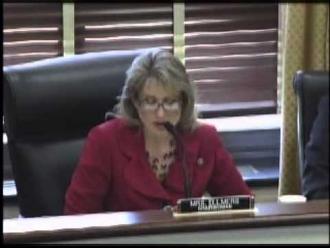 Rep. Ellmers Q&A during Small Business Innovation Hearing
