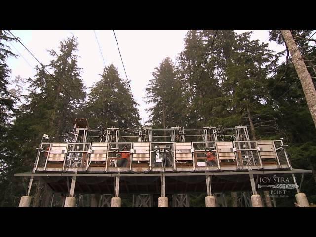 Icy Strait Point ZipRider: Worlds Largest Zipline