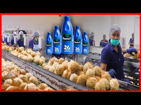 नारियल तेल Factory में ऐसे बनाया जाता है | Coconut Oil Manufacturing - How it's Made
