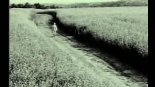 Вурдалак Тарас Шевченко-1. 500 секунд правды об Украине