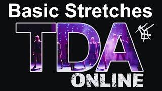 Basic Stretches