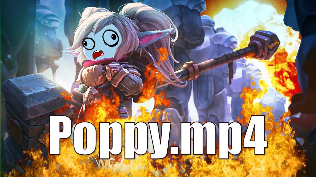 poppy.mp4
