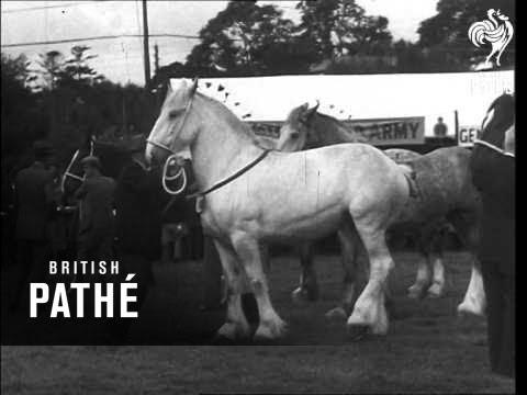 Princess Elizabeth At Carmarthen (1947)