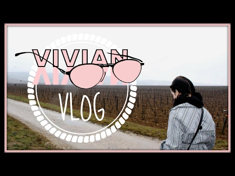 STUDYING ABROAD IN DIJON || Vlog: January 30th-February 5th