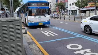 (옥천 시내버스) 자일대우버스 NEW BS106 뉴 로…