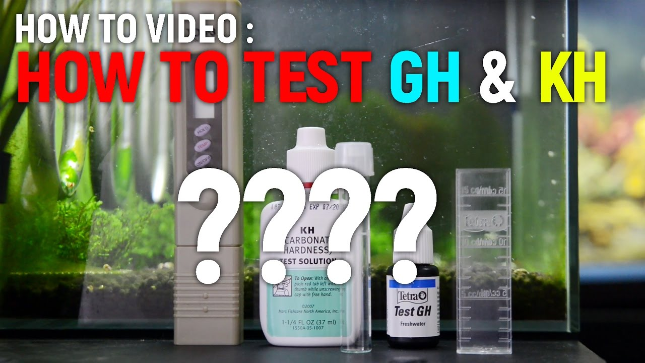 How To Test Gh Kh Of Your Tank Water Youtube