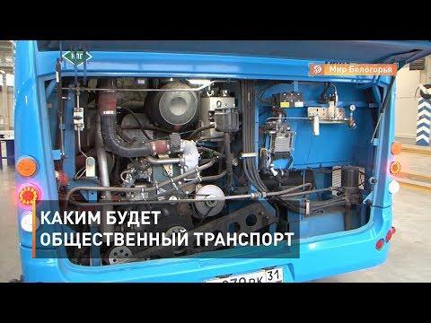 Каким будет общественный транспорт Белгородской области