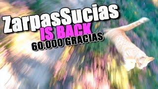 MIS GALLINAS, CONEJOS Y ZarpasSucias, EL MEJOR GATO | 60.000 GRACIAS